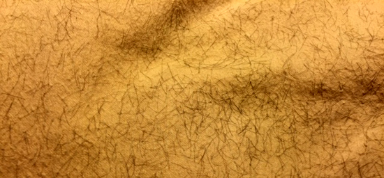 Just a small section of my pillow this morning. The area was a good 10-12 inches square. Lots of hair, hair, hair, hair, hair.